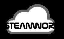 Steamwork